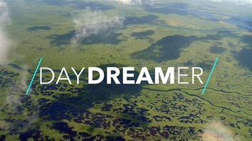 Playful Manatees, Mangrove Kayaking, and More