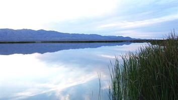 Locals Help Restore the Colorado Delta