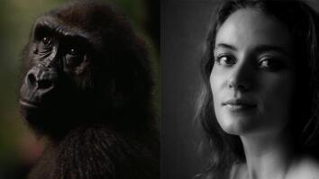 NG Live!: Chimps vs. Humans: Successful Societies