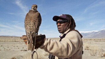 Hunting With Falcons: How One City Man Found His Calling in the Wild
