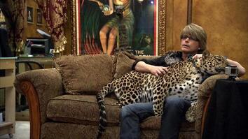 A Magician's Wildcats