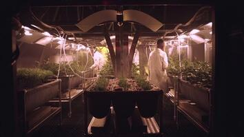 Growing Food on Mars