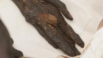 Stolen Mummy's Left Hand Found and Returned to Egypt