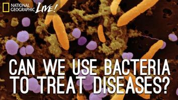 Can We Use Bacteria to Treat Diseases?
