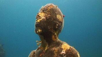 Statue Reef