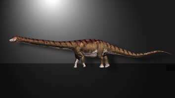 Watch: Biggest Dinosaur Ever Found