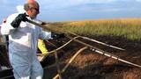 Oil-Eating Bacteria Engineered