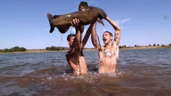 Tournament Fish