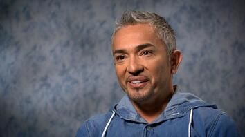 Cesar Millan on Unlikely Animal Friends