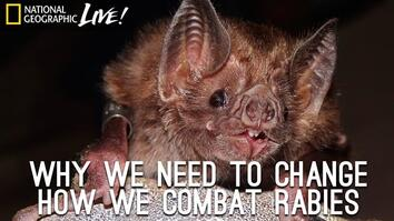 Why We Need to Change How We Combat Rabies