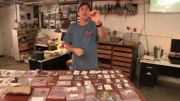 Diggers Blog: Smallest Artifact Ever