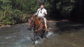 Horses and Solitude: Inside the Life of a Brazilian Gaúcho