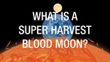 What Causes a Super Harvest Blood Moon?