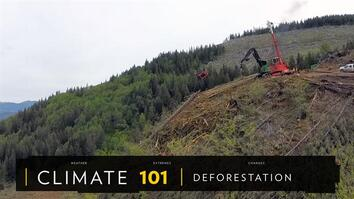 Climate 101: Deforestation