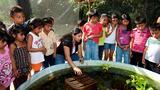 Maritza Morales Casanova: The New Noah's Ark
