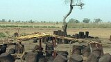 Senegal Monoliths