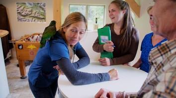 A Parrot with a Secret