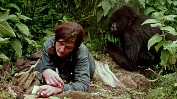 Dian Fossey's Life with Gorillas Revealed in Rarely Seen Film