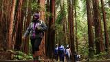 Meet the People Behind a Movement to Diversify Our National Parks