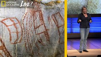 Ice Age Cave Art: Unlocking the Mysteries Behind These Markings