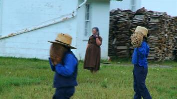 This Week:  Amish in Public
