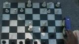 Baby Checkmate — New York