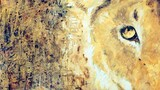 Asher Jay: Art of the Matter
