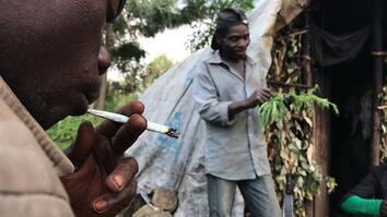 Risking Arrest, Pygmies Deal Weed to Survive in the Congo