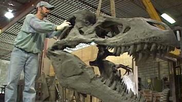Dinosaur Builder