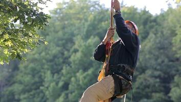 Tree Climbing: Learn the Lingo