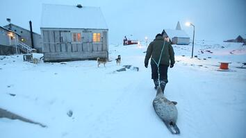 Meat Helped Inuits Survive for Generations