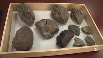 Oldest Known Stone Tools Discovered: 3.3 Million Years Old