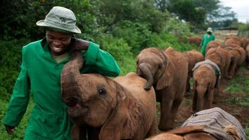 The Elephant Whisperers
