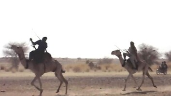 Camel Racing in Niger