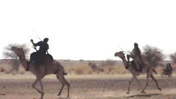 Camel Racing in Niger