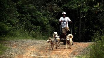Tennessee Dog Sled Team