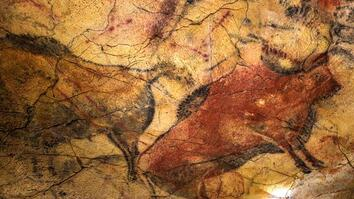 Did Humans Make These Ancient Cave Paintings?