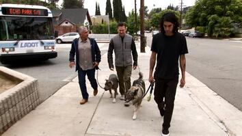 Cesar 911: Overcoming a Bad History