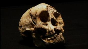 Ancient Little People Found?