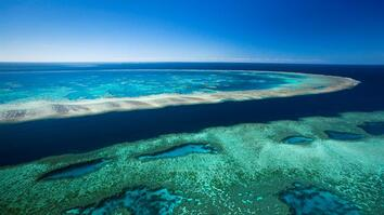 Experience the Splendor of Australia's Great Barrier Reef