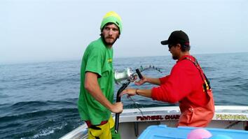 Wicked Tuna: Smart Fish