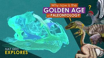 Why now is the golden age of paleontology