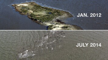 The Gulf Oil Spill Disintegrated This Island