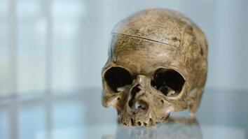 Exclusive: Is This the Skull of Slave Rebellion Leader Nat Turner?