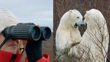 She Got to See Wild Polar Bears. Will the Next Generation?