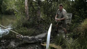Campsite Croc
