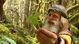 Meet Mick Dodge