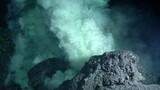 Deep Eruption, Odd Shrimp Seen