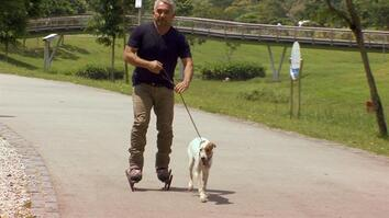 Cesar 911: Making Fear Disappear