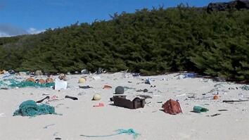 38 Million Pieces of Plastic Trash Cover This Remote Island